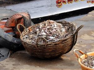 Fish market3