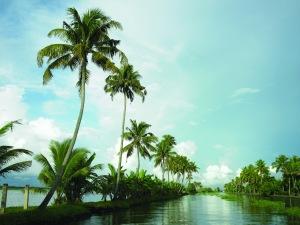 Image courtesy: https://www.keralatourism.org